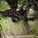 Súlovské skaly ve jménu bláta