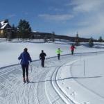 Jesenická 40 na lyžích startuje 18. února