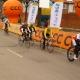 Silniční závod žen v Polsku - Sobotka 51 km